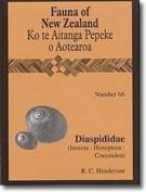 Diaspididae (Insecta