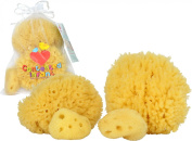 4 Pack Natural Sea Sponge for Baby & Toddler Bath By Contented Infant - Gentle Hypoallergenic Baby Shower Care Gift Set