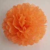 Set of 5 Tissue Paper Pom Pom - PomPomSale Brand - Wedding / Baby Shower / Birthday Party / Nursery Decorations