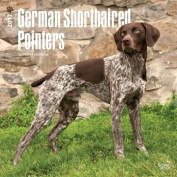 German Shorthaired Pointers 2017 Square